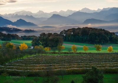 Unsere schöne Landschaft auf dem Uffikoner-Winikoner Berg