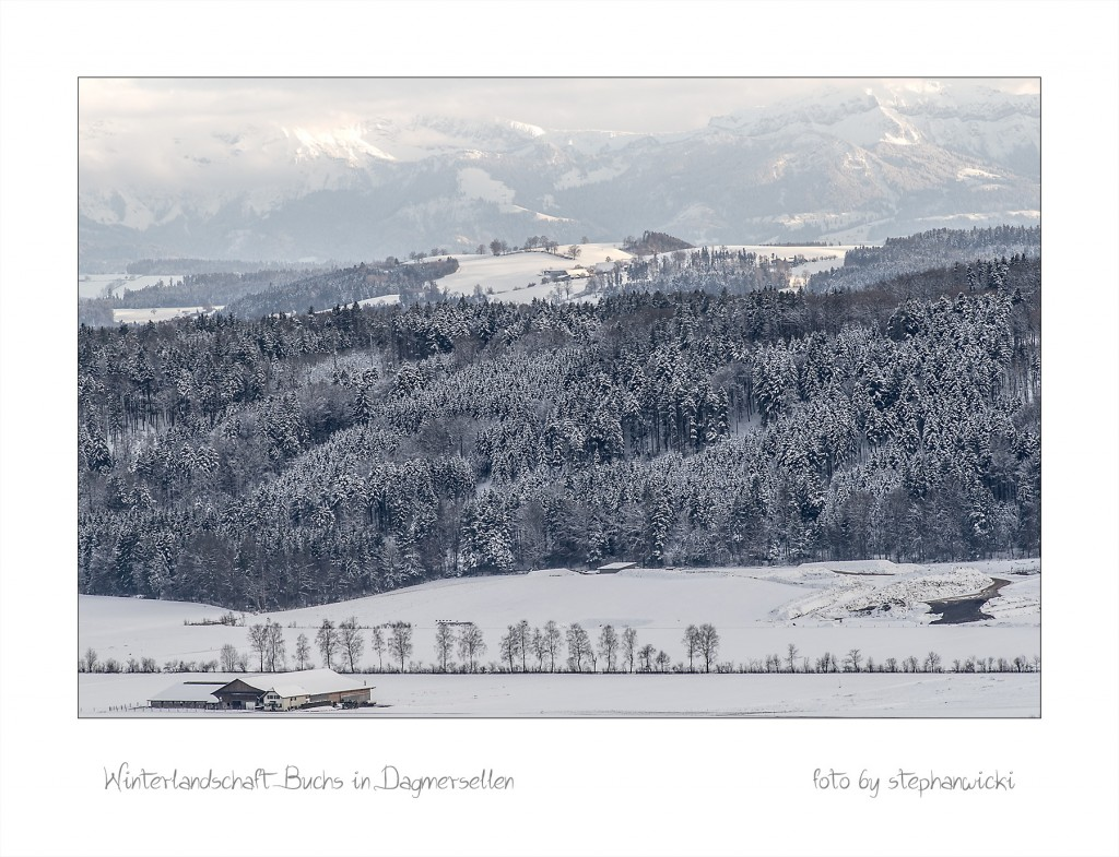 Winter in Buchs