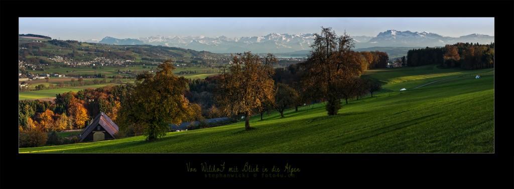 Mit Blick in die Alpen