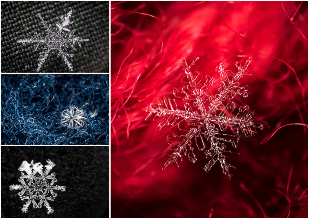 Collage snowflakes_1