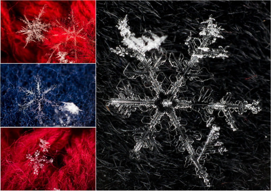 Collage snowflakes_2